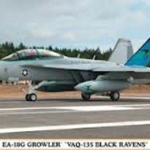 EA-18 G Growler
